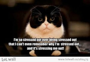 i-m-so-stressed-out_260473-500x